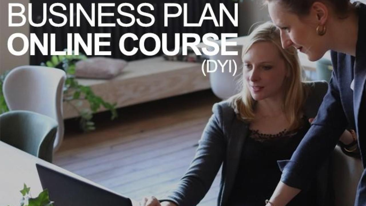 Business Plan Online Course (DIY)